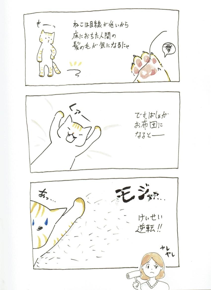 猫マンガわらびの日常「ぬけ毛のおなやみ」