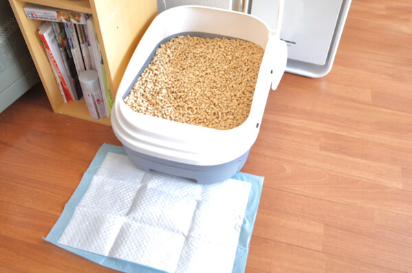 現在の猫トイレ